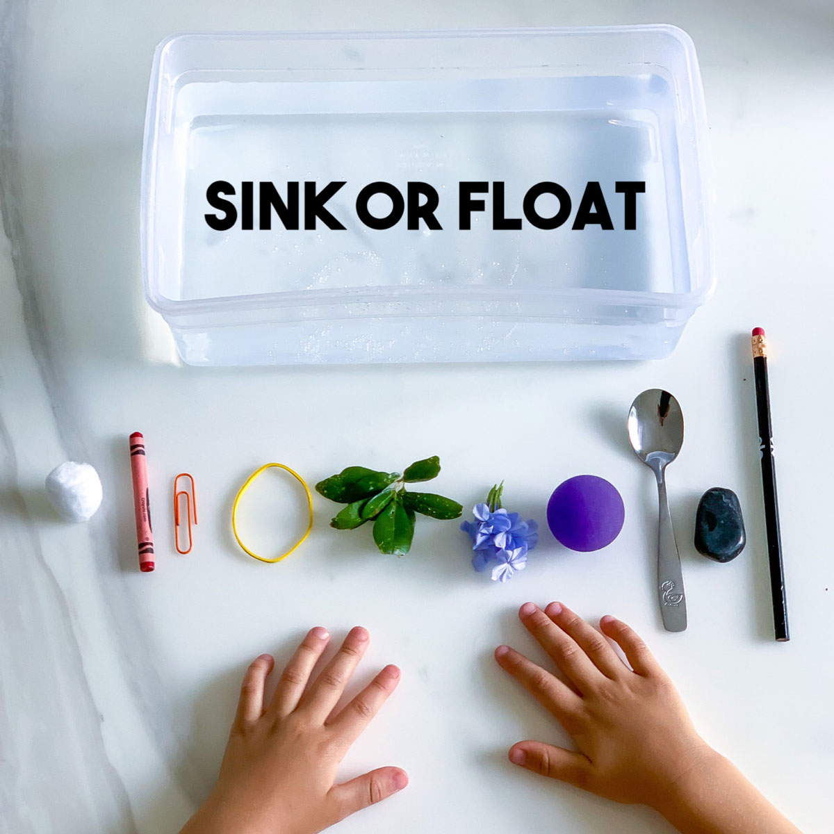Sink or Float Experiment – All About Density!