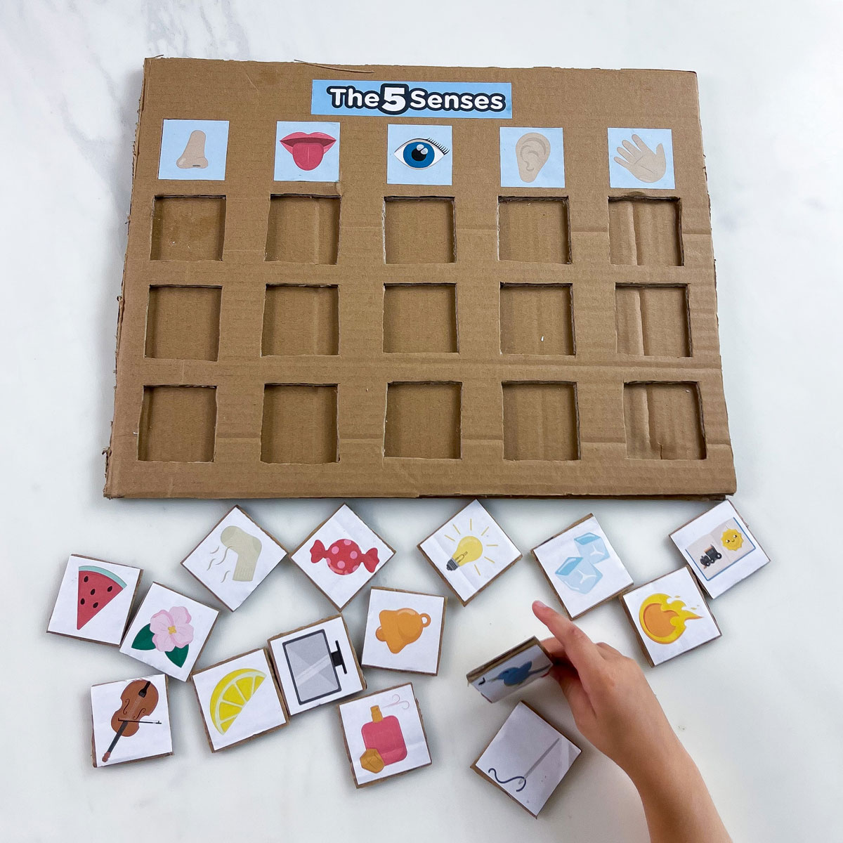 5 Senses Activity – How to Make a Puzzle for Kids
