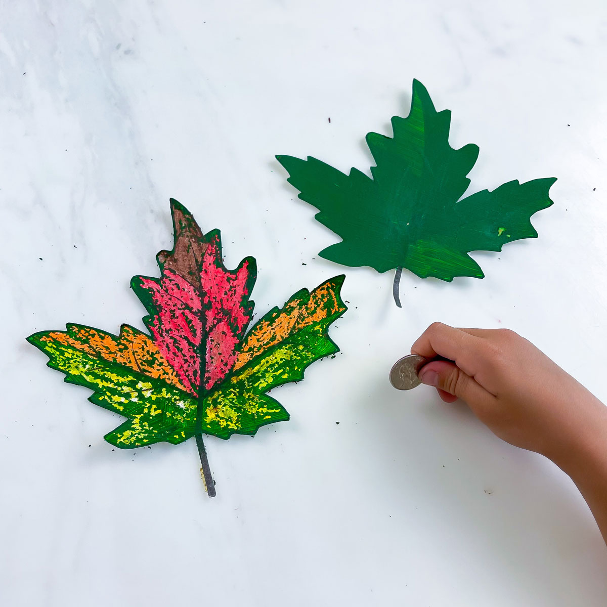 Fall Leaf Craft – From Green to Beautiful Autumn Colors